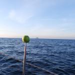 Jabuka Ultra sailing